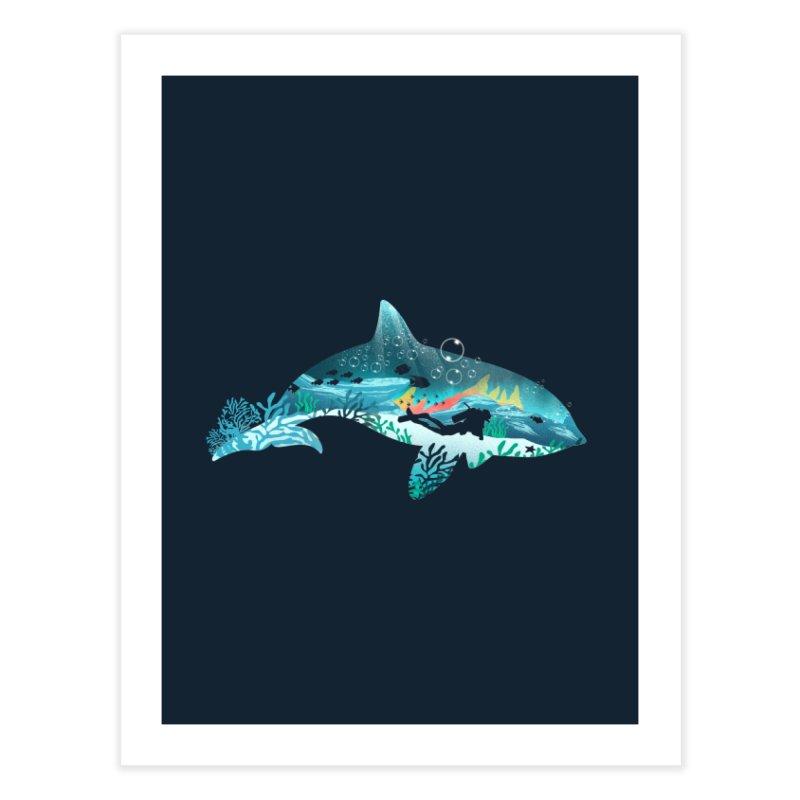 Dolphin Diver Home Fine Art Print by dandingeroz's Artist Shop