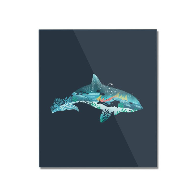 Dolphin Diver Home Mounted Acrylic Print by dandingeroz's Artist Shop