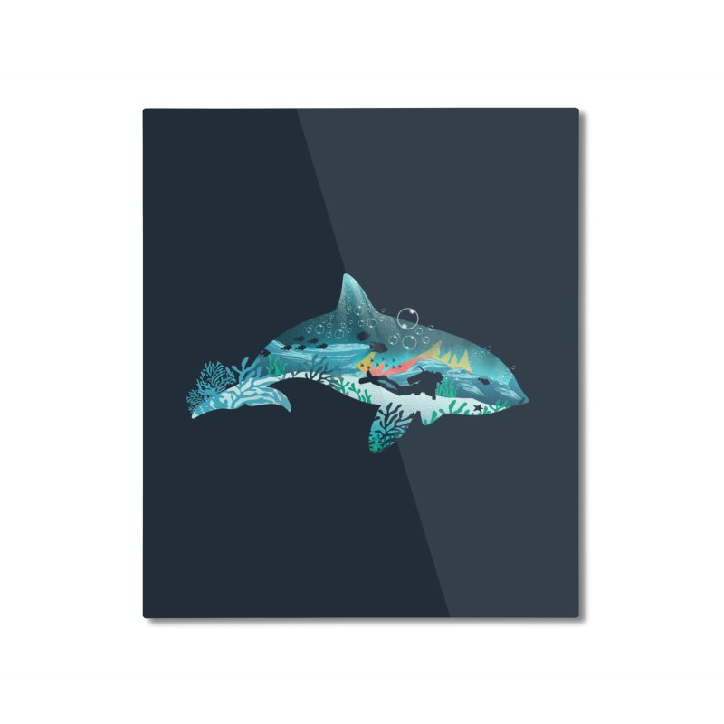 Dolphin Diver Home Mounted Aluminum Print by dandingeroz's Artist Shop