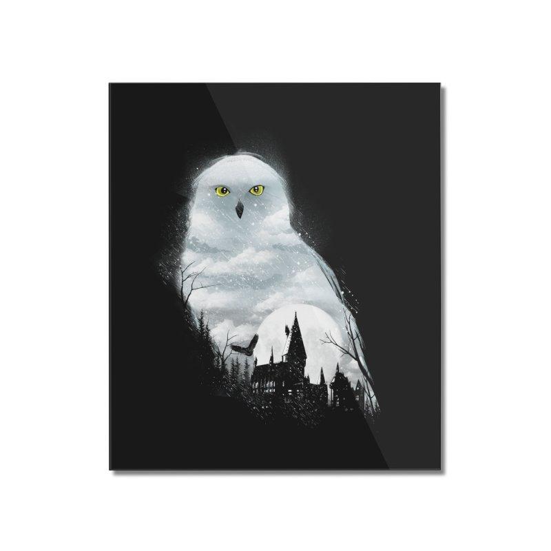 Magical Winter Home Mounted Acrylic Print by dandingeroz's Artist Shop