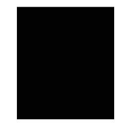 dandingeroz Logo