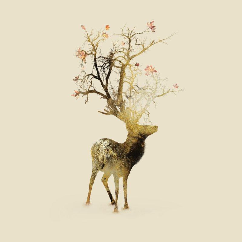 Autumn by Daniel Taylor