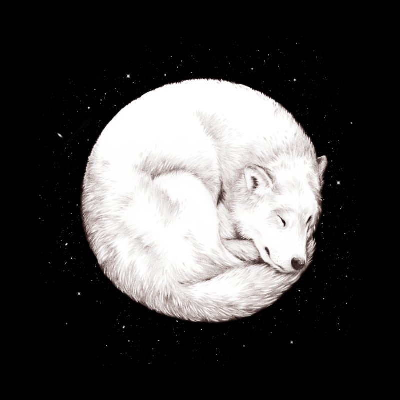 The Howl of the Moon by Daniel Teixeira—Artworks