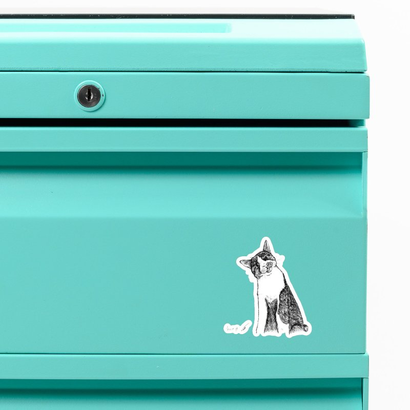 Cat Clear Accessories Magnet by danmichaeli's Artist Shop