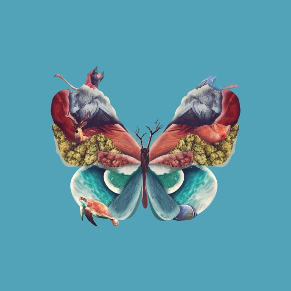 Design for The great butterfly
