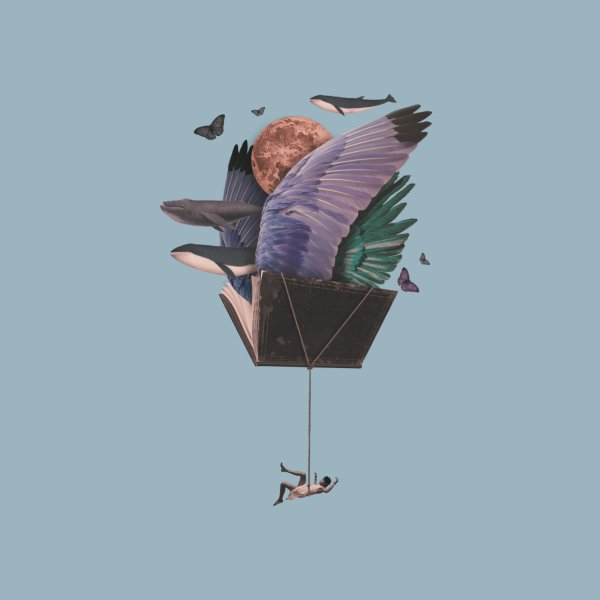 Design for Read and fly away
