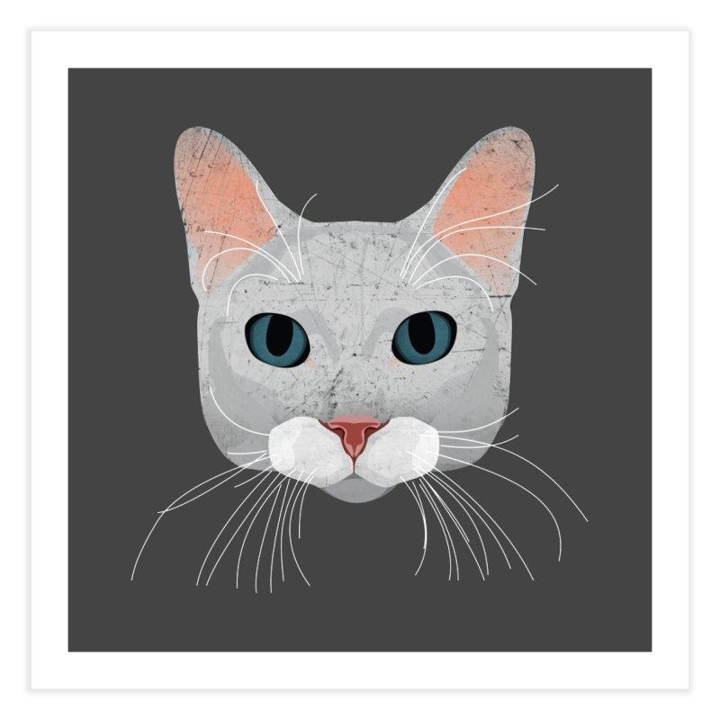 Cat Ramona Home Fine Art Print by darkodjordjevic's Artist Shop
