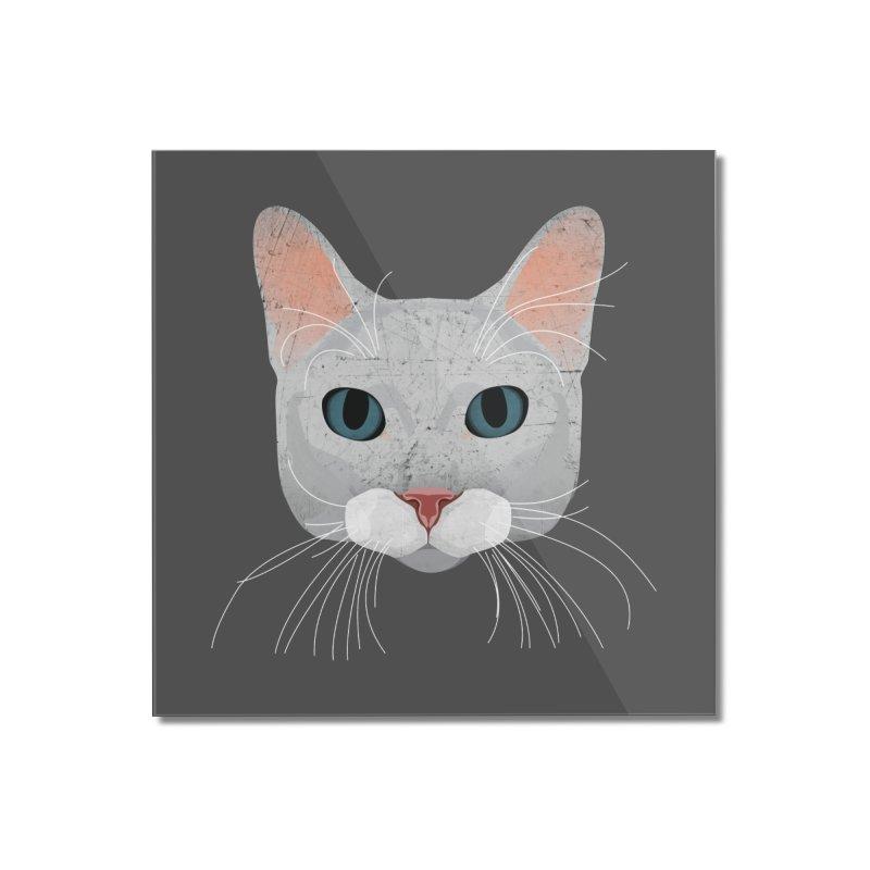 Cat Ramona Home Mounted Acrylic Print by darkodjordjevic's Artist Shop