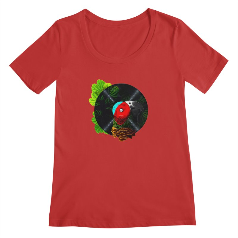 Bird Tunes Women's Scoopneck by DavidBS