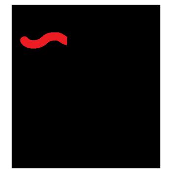 David Maclennan Logo