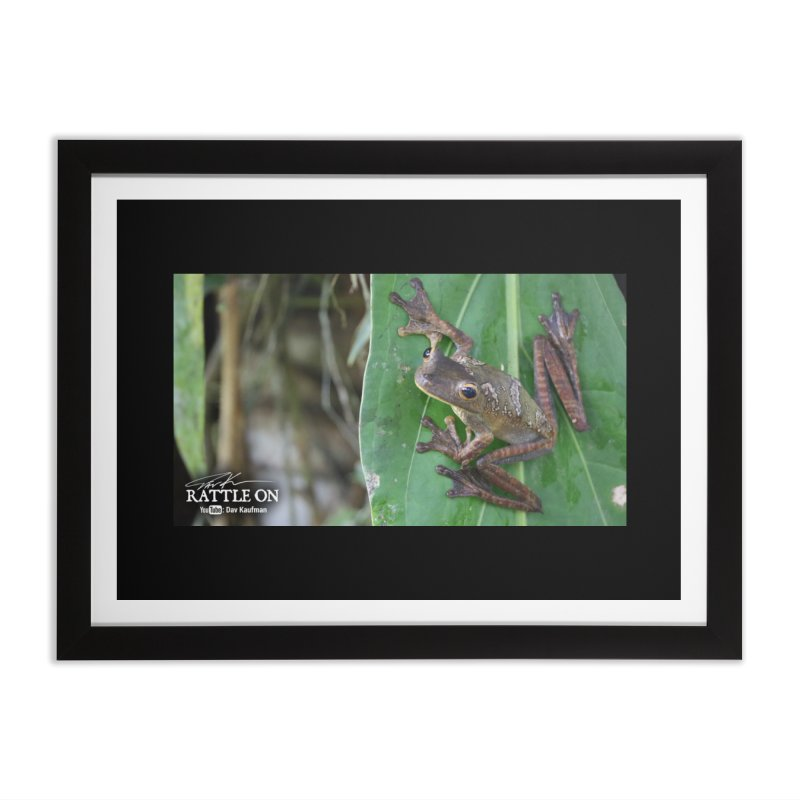 Map Frog 2 Home Framed Fine Art Print by Dav Kaufman's Swag Shop!