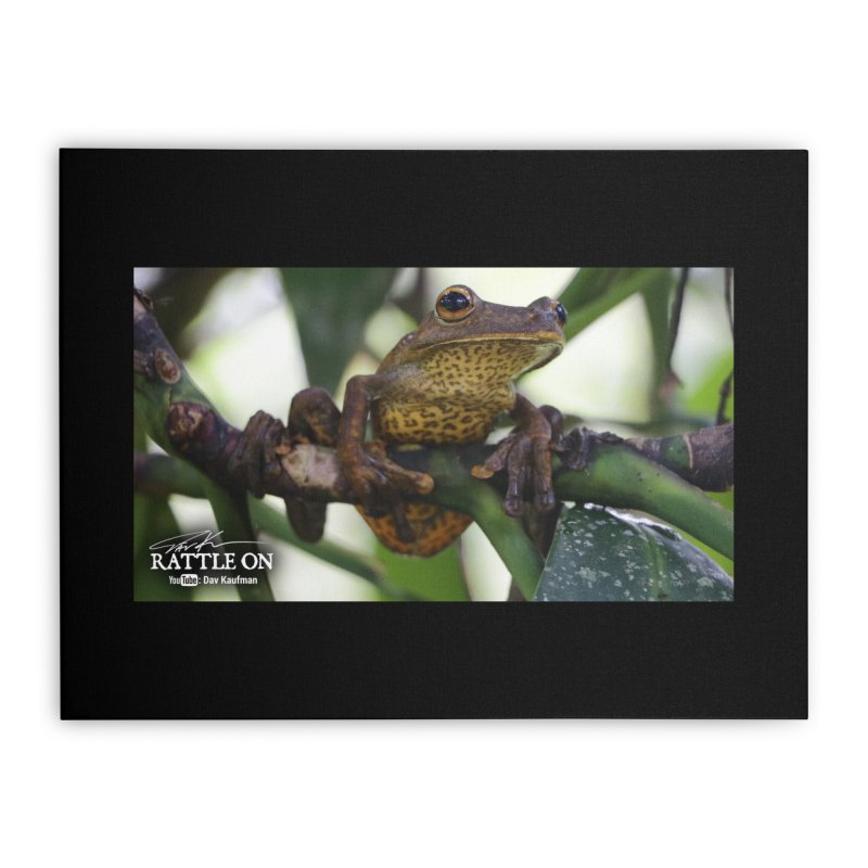 Map Frog Home Stretched Canvas by Dav Kaufman's Swag Shop!