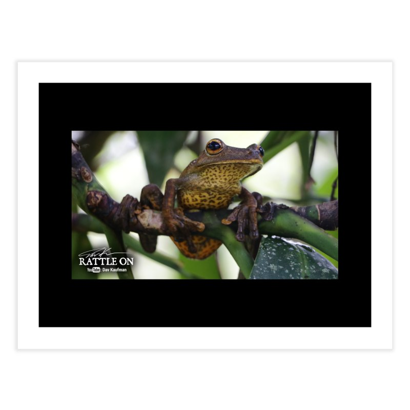 Map Frog Home Fine Art Print by Dav Kaufman's Swag Shop!