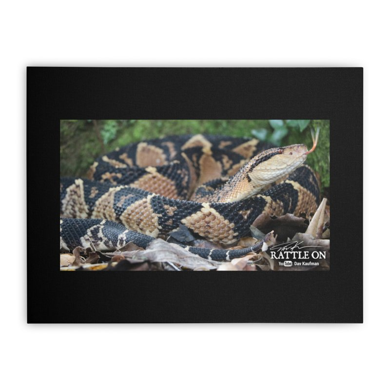 Bushmaster Home Stretched Canvas by Dav Kaufman's Swag Shop!