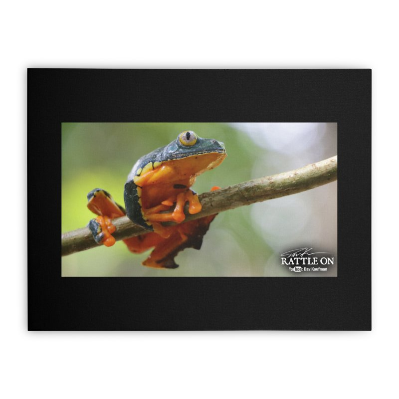 Amazon Leaf Frog Home Stretched Canvas by Dav Kaufman's Swag Shop!