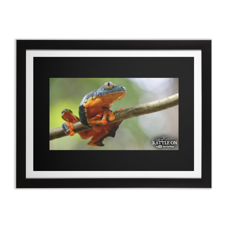Amazon Leaf Frog Home Framed Fine Art Print by Dav Kaufman's Swag Shop!