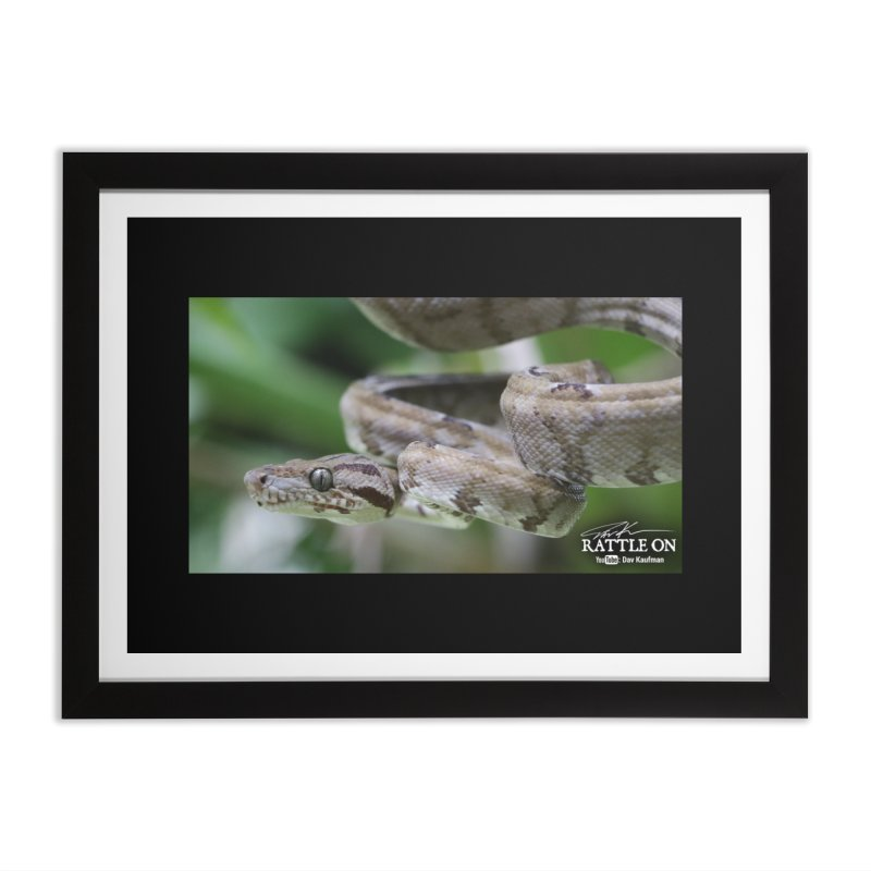 Amazon Tree Boa Home Framed Fine Art Print by Dav Kaufman's Swag Shop!