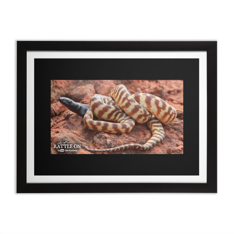 Black Headed Python Home Framed Fine Art Print by Dav Kaufman's Swag Shop!