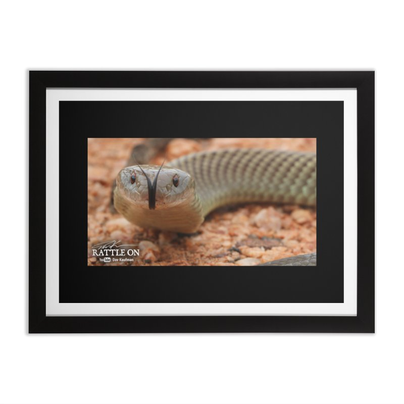 Mulga (King Brown Snake) Home Framed Fine Art Print by Dav Kaufman's Swag Shop!
