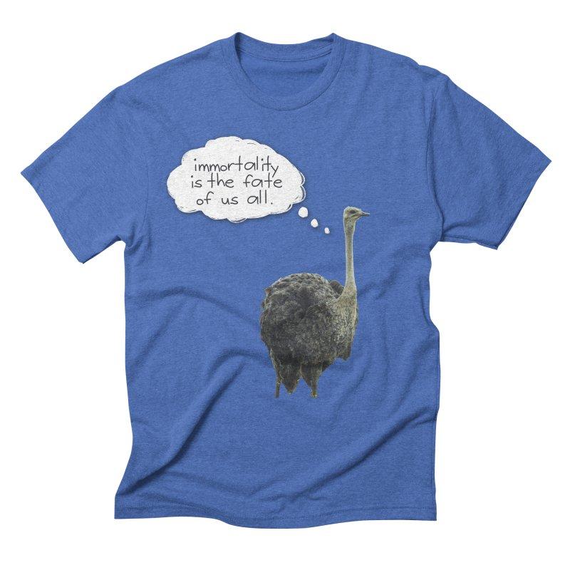 birdbrain Men's Triblend T-shirt by ddesigns by ddespair