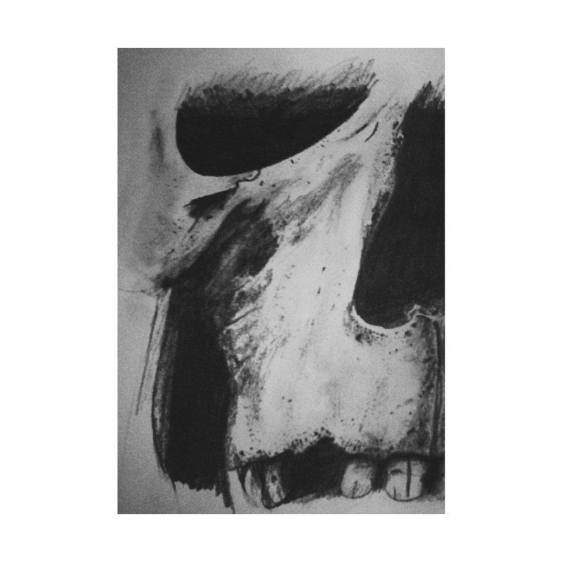 Skull by Curiosity's Shop