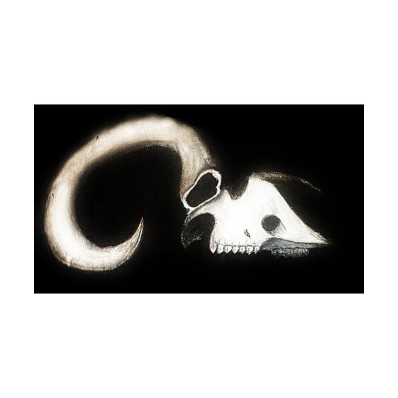 Ram skull by Curiosity's Shop