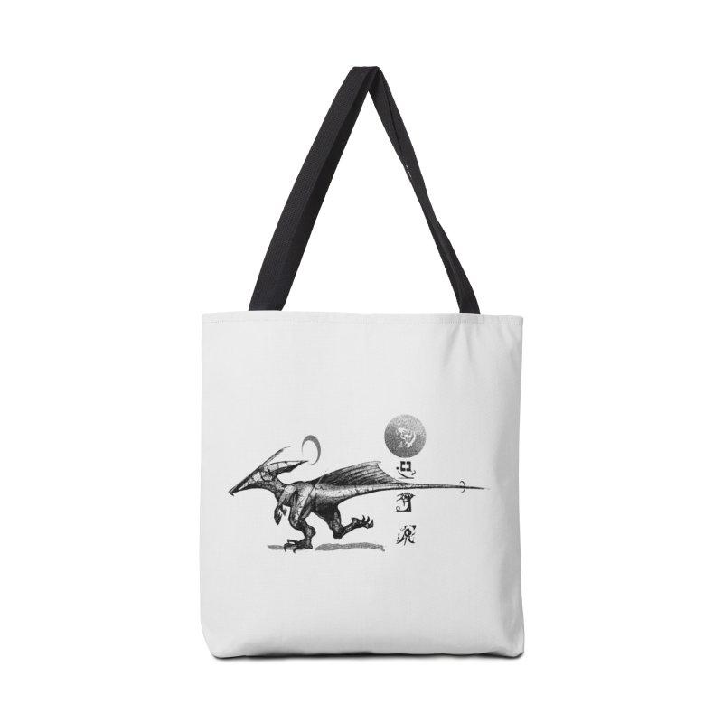 Sun Racer Accessories Bag by Dega Studios