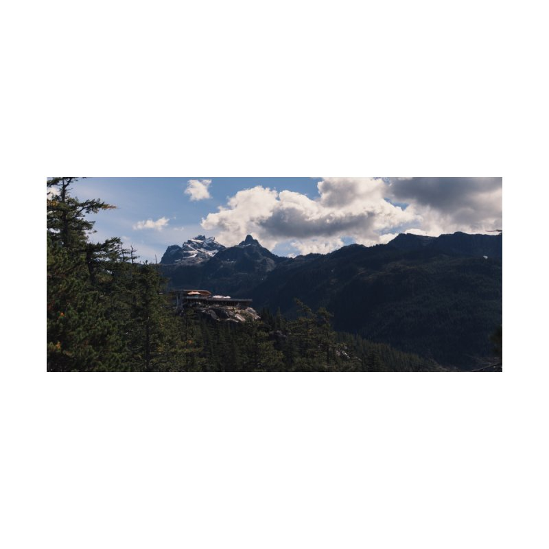 Panorama of Capilano Park in BC, Canada by denjinosee