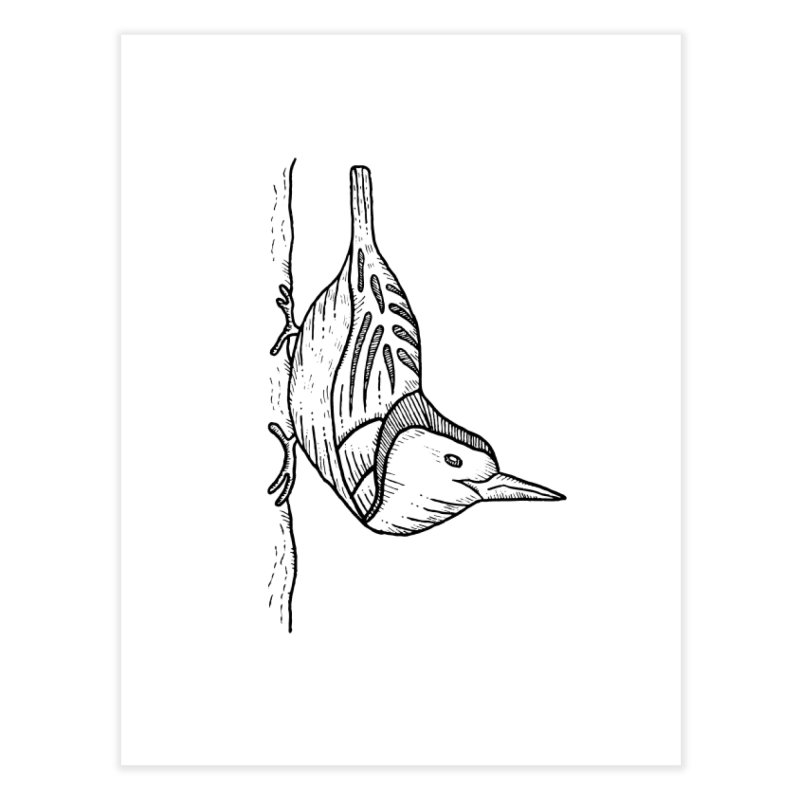 White Breasted Nuthatch Home Fine Art Print by Dennis Good