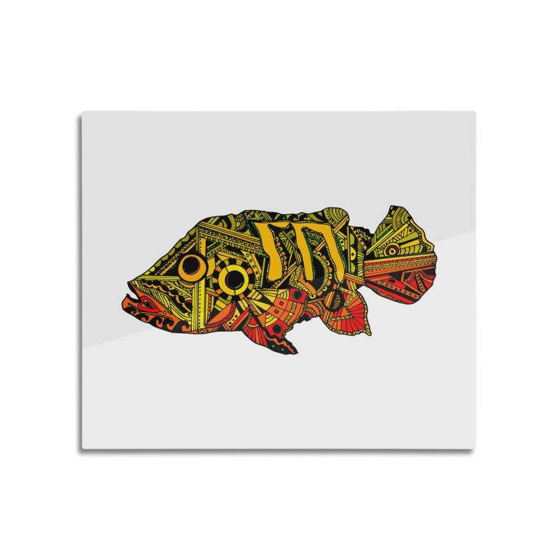 Color Peacock Bass Home Mounted Aluminum Print by designsbydana's Artist Shop