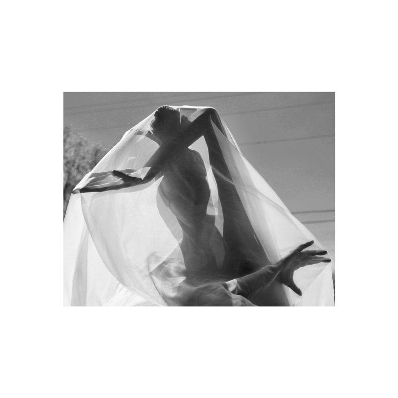 Under the veil by designsbydana's Artist Shop