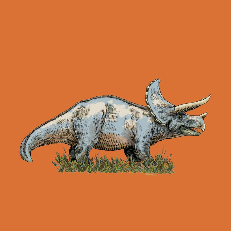 BEHOLD! THE TRICERATOPS! Women's Fitted T-Shirt by Dustin Harbin's Sweet T's!