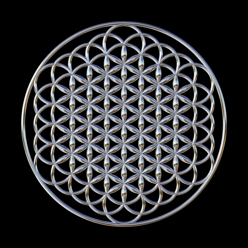 Extended Flower of Life Silver by diamondheart's Artist Shop
