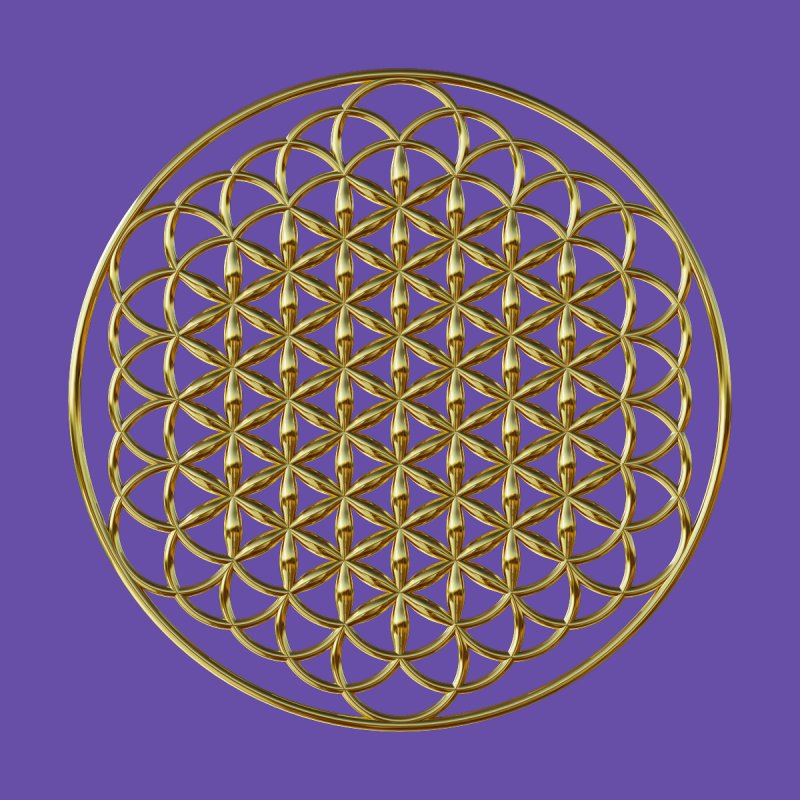 Extended Flower of Life Gold by diamondheart's Artist Shop