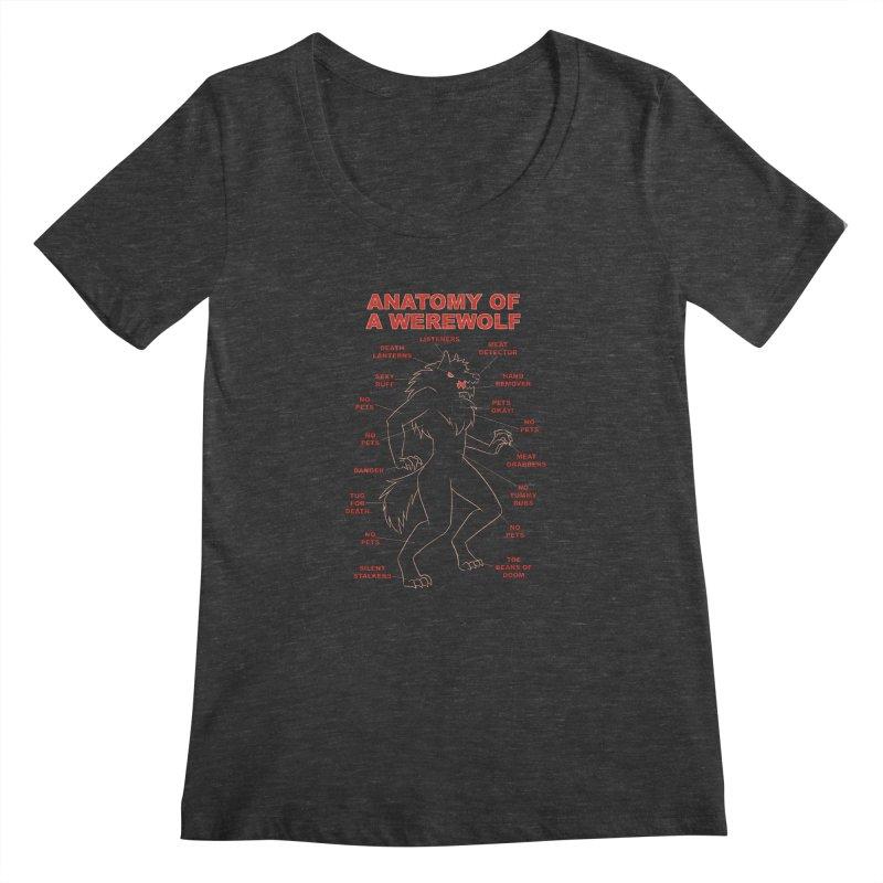 Anatomy of a Werewolf Women's Scoopneck by dianasprinkle's Artist Shop