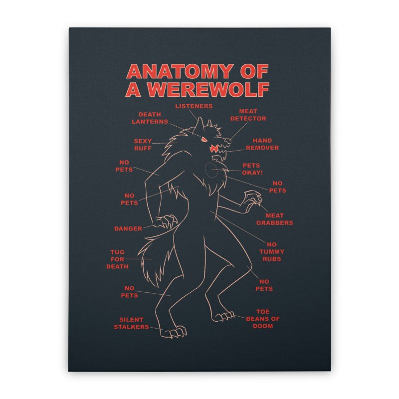 Anatomy of a Werewolf Home Stretched Canvas by dianasprinkle's Artist Shop