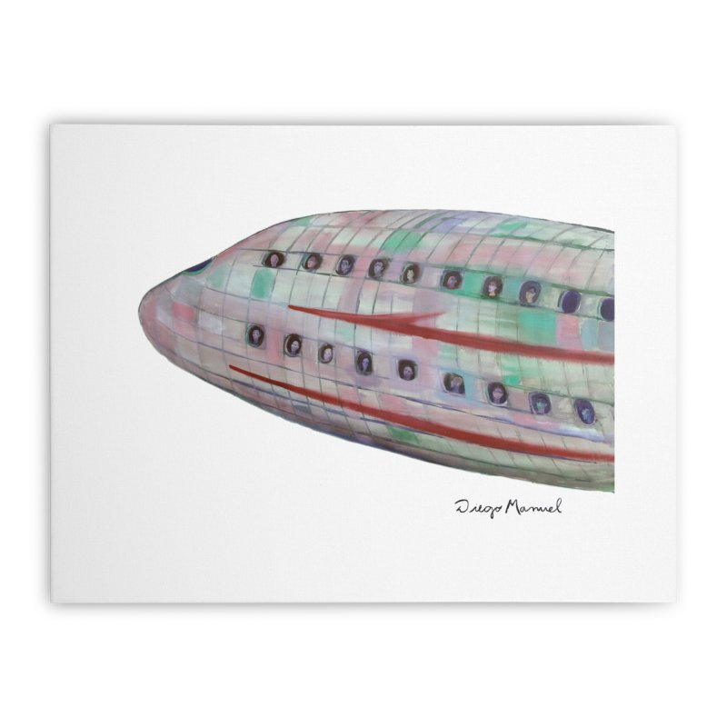 The plane 3 Home Stretched Canvas by Diego Manuel Rodriguez Artist Shop