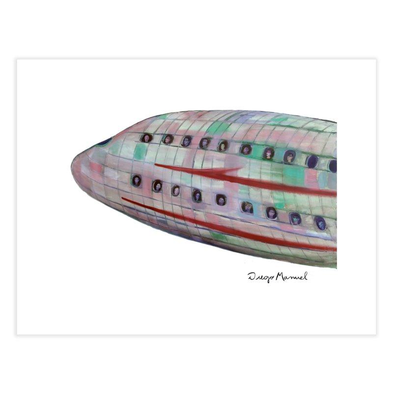 The plane 3 Home Fine Art Print by Diego Manuel Rodriguez Artist Shop