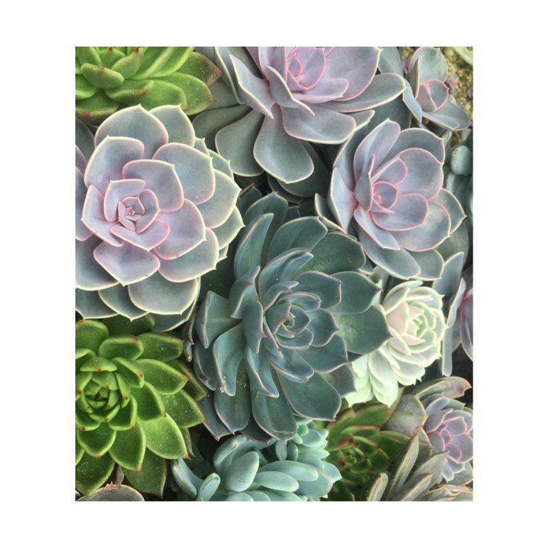 Succulents by Dirtbag Blues