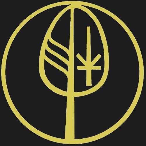 DISALVATRONS AMUNWEAR Logo