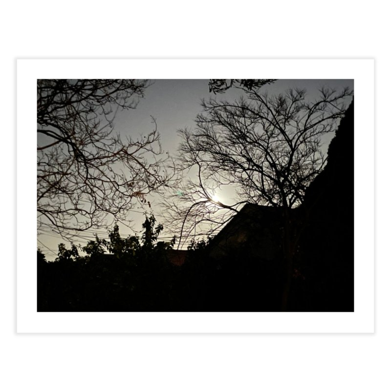 Moon through trees Home Fine Art Print by Disposable Bits's Shop