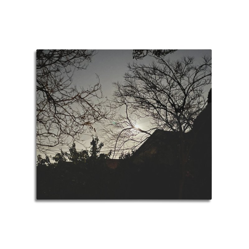 Moon through trees Home Mounted Aluminum Print by Disposable Bits's Shop