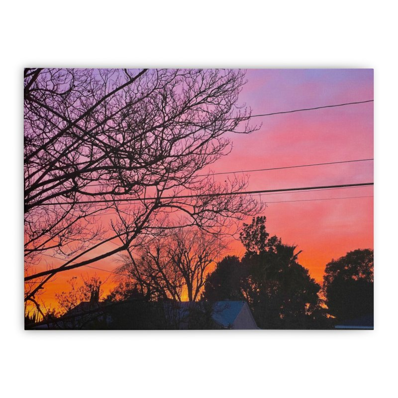 Sunset through trees Home Stretched Canvas by Disposable Bits's Shop