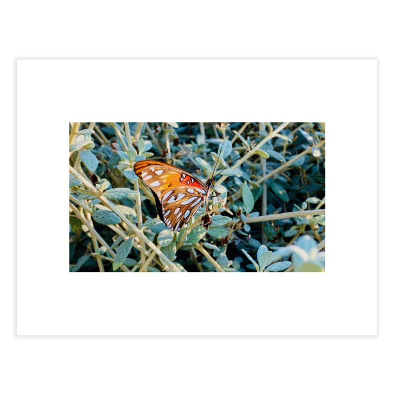 Butterfly Home Fine Art Print by Disposable Bits's Shop