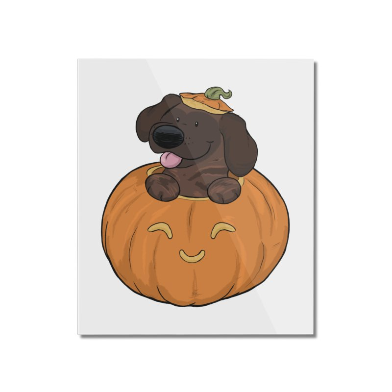Tonka the Pumpkin Pupkin Home Mounted Acrylic Print by DnDoggos's Artist Shop