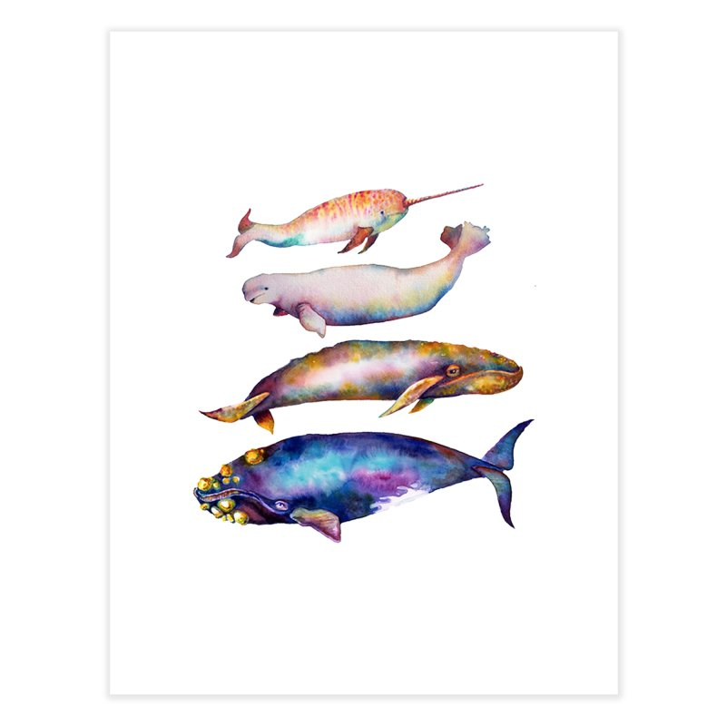 4 Watercolor Whales Home Fine Art Print by dotsofpaint threads