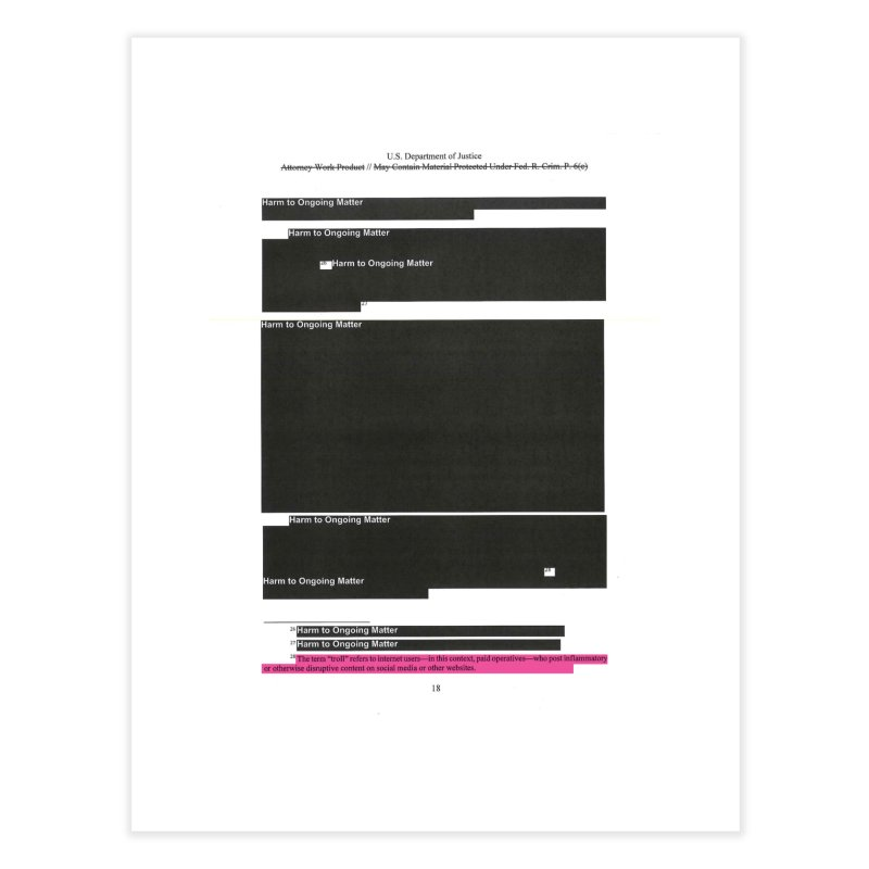 Redacted Mueller Report Page 18 Home Fine Art Print by DRAWMARK
