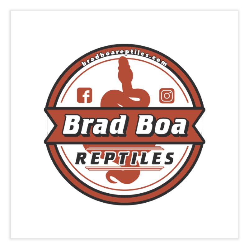 Brad Boa Reptiles Home Fine Art Print by Drawn to Scales
