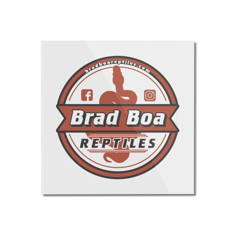 Brad Boa Reptiles Home Mounted Acrylic Print by Drawn to Scales