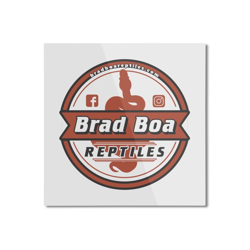 Brad Boa Reptiles Home Mounted Aluminum Print by Drawn to Scales